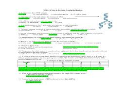 section   rna and protein synthesis worksheet answers  with dna rna and protein synthesis test   dna synthesis quiz size  x   px source pulpbitsnet from guillermotullcom