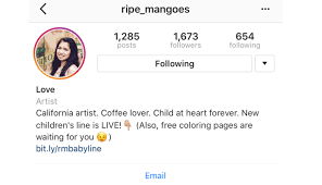 biography for instagram profile how to craft the best instagram bios for businesses sprout social