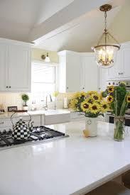Kitchen Maintenance 62 Best Classic White Kitchen Images On Pinterest White Kitchens