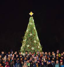 how many christmas lights per foot of tree national christmas tree united states wikipedia