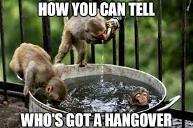 Hungover Meme - hangover meme bad hangover photos and funny hangover memes