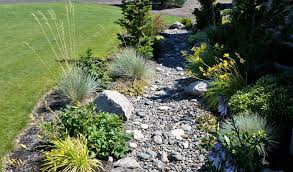 patio drainage problem solving water problems with dry creek beds
