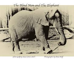 Blind Man And Elephant The Blind Men And The Elephant By Ritashi Fine Art Photography