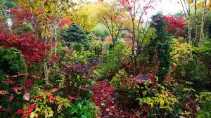 the most beautiful gardens in the world images four