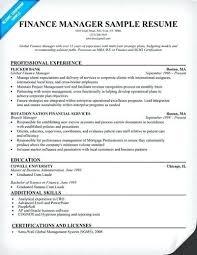 sample resume for finance executive u2013 topshoppingnetwork com