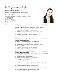 resume template examples of modern contemporary sample for 81