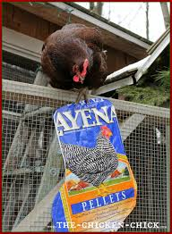 the chicken repurposed chicken feed bag christmas stockings