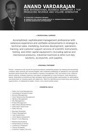 Sample Resume For Client Relationship Management by Ceo Resume Samples Visualcv Resume Samples Database