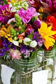 Plant Flower Garden - best 20 cut flower garden ideas on pinterest spring plants
