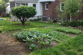 gardening ideas part 11