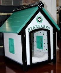 Dog House Interior Cute Dog Houses Foter