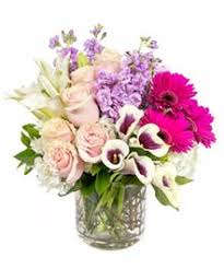 same day just because flowers just because flowers boston ma central square florist same day