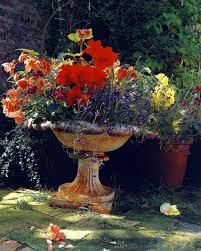 Plant Combination Ideas For Container Gardens 206 Best Garden Pots Urns Images On Pinterest Garden Urns