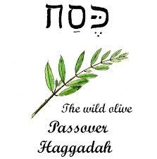 the messianic passover haggadah haggadah cover jpg