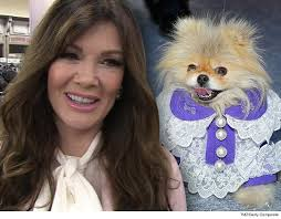 linda vanserpump hair lisa vanderpump s dog outfit lawsuit dismissed tmz com