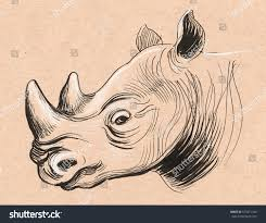rhino head sketch stock illustration 575071186 shutterstock