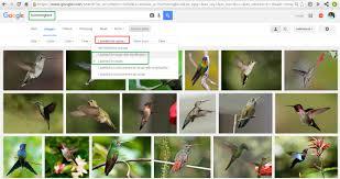 google free images online u2013 labeled for reuse