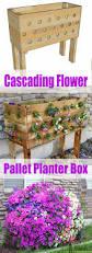 Diy Railing Planter Box by 25 Unique Pallet Planter Box Ideas On Pinterest Pallet Planters