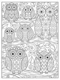 owl u2026 pinteres u2026