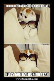 Sunglass Meme - sunglasses meme 24 sunphilia com humor pinterest