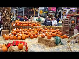Local Pumpkin Farms In Nj by Corn Mazes And Pumpkin Patches Near New York 2017 Axs
