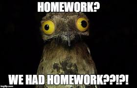 Homework Meme - weird stuff i do potoo meme imgflip