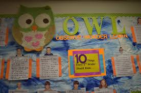 hoot and holler for owl classroom decor astute hoot