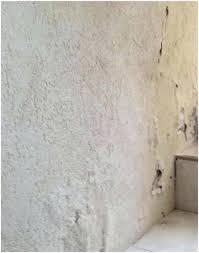 moisissure chambre bébé humidite mur la moisissure et laccumulation dhumiditac sur le dune