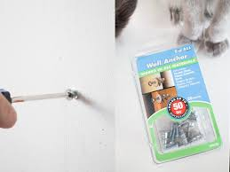 How To Build Wall Shelves How To Build Cat Shelves That Your Cat Will Love Brooklyn Farm
