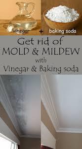 best 25 mildew stains ideas on pinterest tartar cream vinegar