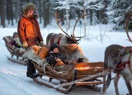 reindeer ride in rovaniemi in lapland in santa claus village finland