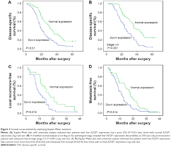 Ct Dss Map Full Text Reduction Of Azgp1 Predicts Poor Prognosis In
