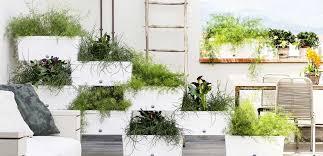 casa e giardino la primavera in casa e in giardino consigli e idee leitv