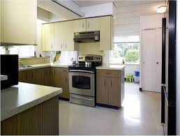 1960s Kitchen by Thermador Home Appliance Blog Candice Olson Kitchen Renovation