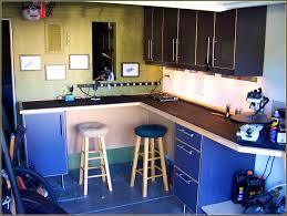 Garage Cabinets Cost Bathroom Charming Build Garage Cabinets Cheap Home Design Ideas
