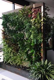 Best Plants For Vertical Garden - stupendous hanging wall garden bunnings getsubject aeproduct