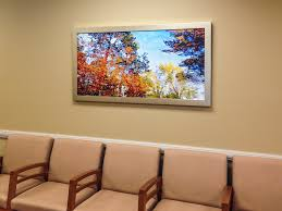 art in medical waiting rooms keeping patients calm and comfortable
