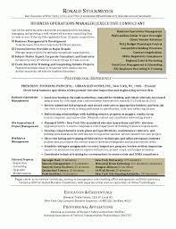 executive curriculum vitae life insurance resume example executive director template sales