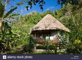 bungalow straw hut jungle resort havelock andaman islands