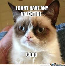Fuck Valentines Day Meme - funny angry cat valentines day angry best of the funny meme