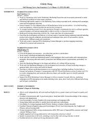 sle resume for digital journalism conferences 2016 marketing executive resume sles velvet jobs