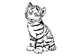 coloring page tigers tiger pictures to print in addition to tiger coloring pages