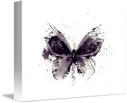 forgotten grey butterfly digital print by melody brown