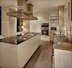 Modern Kitchen Cabinets Colors Wonderful Modern Kitchen Cabinet Colors Flat Fronts Rail Pulls