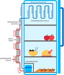 how does a fridge work fantastic fridges ior