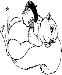 nut coloring page squirrel with acorn coloring page