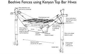 Top Bar How Beehive Fences Help Elephants And Farmers Mnn Mother