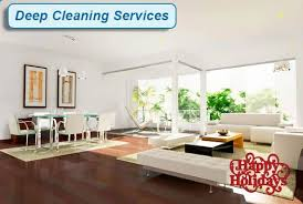 Upholstery Cleaning Sarasota Professional Cleaning Service Port Charlotte Englewood Boca