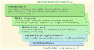 Plants Diseases And Treatment - damping off diseases infonet biovision home