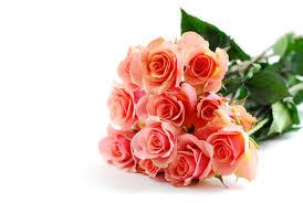 gorgeous mother u0027s day flowers 2 u2022 pics hitz